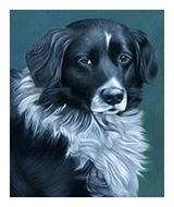 Acrylic Pet Portraits, Dog Portrait, Cat Portrait, Horse Portrait, Atlanta