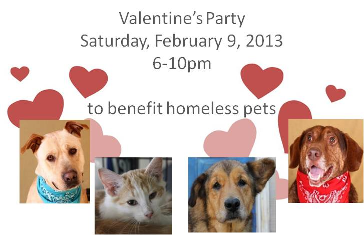 Share your love with homeless pets, Valentine's Party