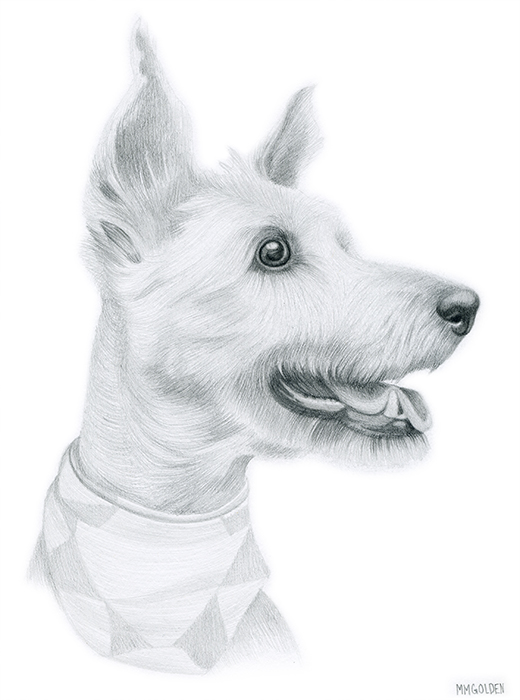 Pencil dog portrait